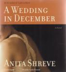 Wedding In December, A