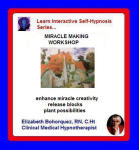 Learn Interactice Self-Hypnosis Series: Inner Exploration - Miracle Making Workshop