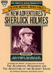 New Adventures of Sherlock Holmes Vol. 24, The: The Accidental Murderess, and The Adventure of The Blarney Stone