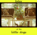 Tales of The Little Dogs