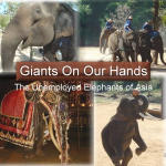 Giants On Our Hands: The Unemployed Elephants of Asia
